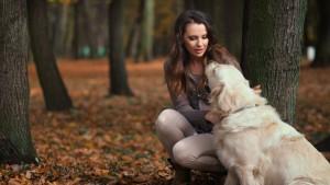 vivre en harmonie avec votre chien !