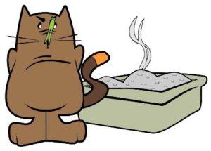 Pourquoi mon chat n'urine pas dans son bac ?
