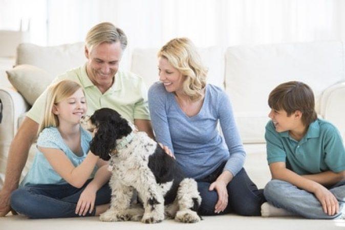 Respectez-vous les besoins de votre chien ?